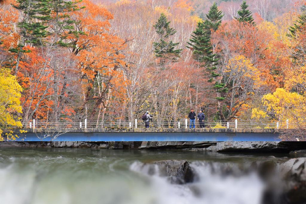 北海道自駕芦別三段滝公園|秋季賞紅黃葉在芦別,國道452號路旁的小景點