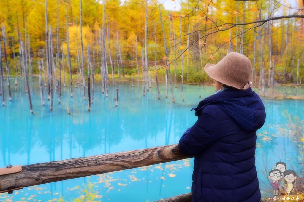 秋日的北海道美瑛|蒂芬妮藍的青池,美的好輕柔,藍的好夢幻