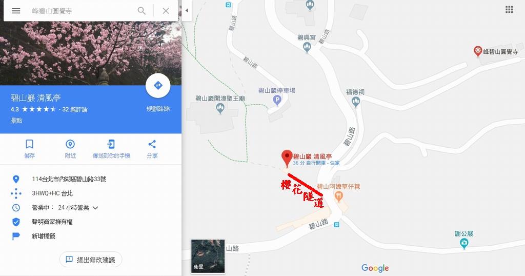 台北內湖|黃金雨.阿勃勒
