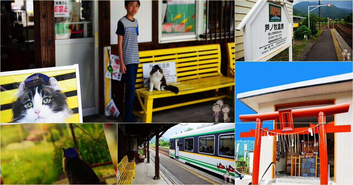 福島 蘆之牧溫泉駅|會津鐵道上的小站風情多,慵懶貓站長LOVE駐站中